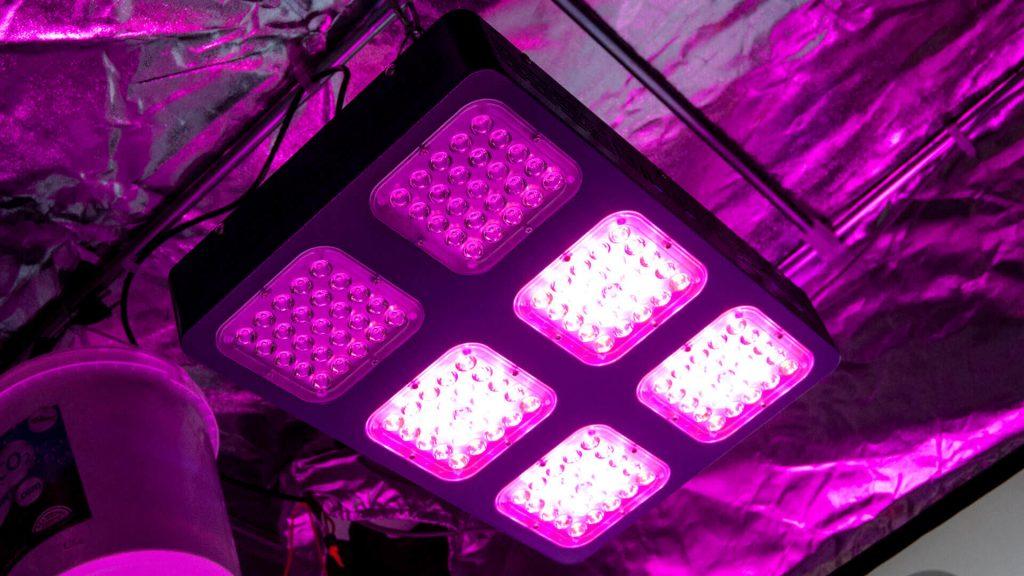 Lampade - guida alla coltivazione indoor