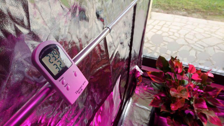 Temperatura e umidità ideale nella grow box - foto igrometro