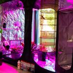 Growbox - Grow Shop Lecco