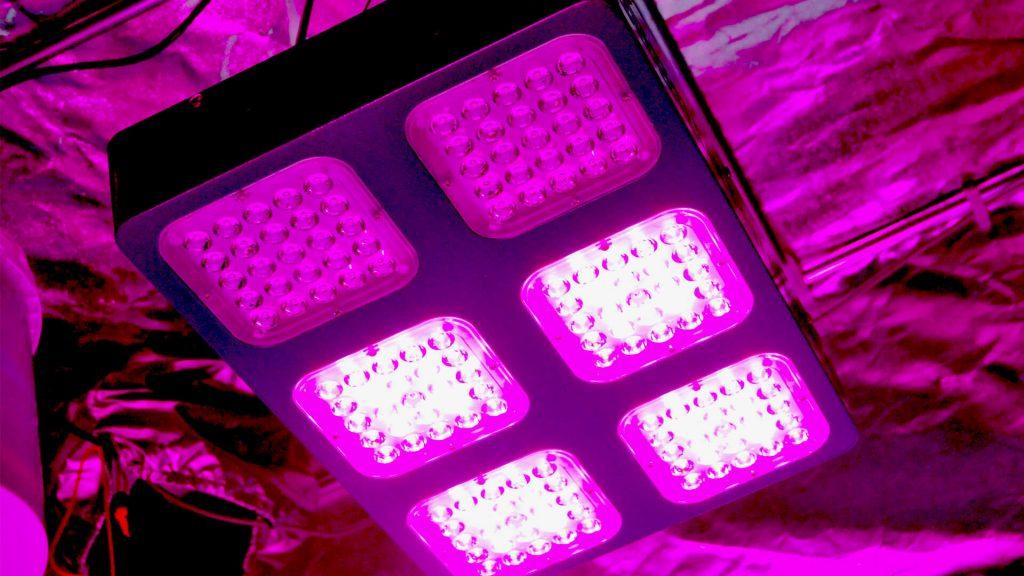 Allestire una grow box - lampade- illuminazione