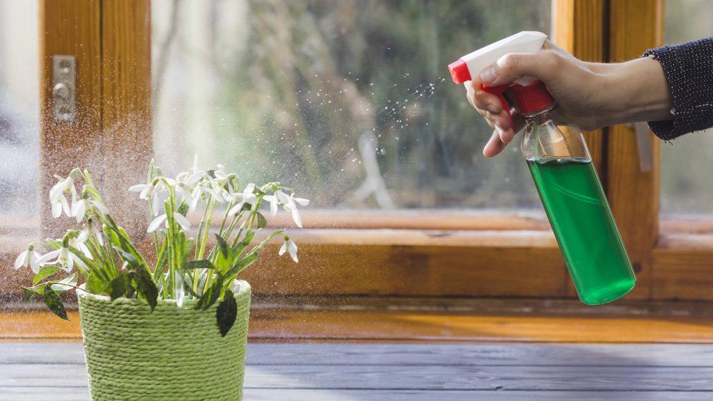 Fertilizzanti fasi vegetativa e crescita