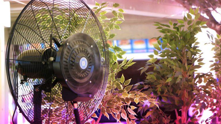 Ventilazione della grow box